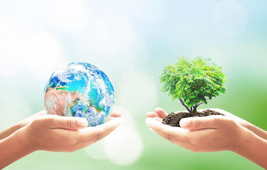 Mãos segurando o planeta terra e uma árvore plantada.